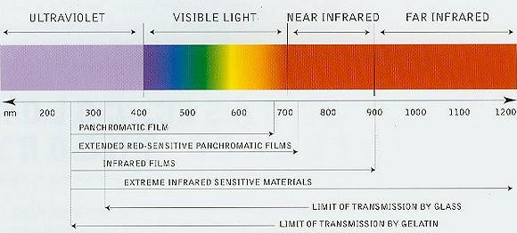 Understanding Using Black White Infrared Film